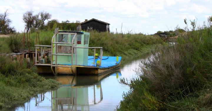barque de peche ostréicole